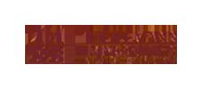 logo_theilemann